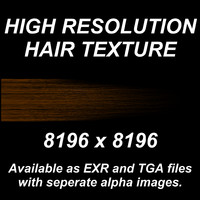 High Resolution Hair Texture - Light Brown