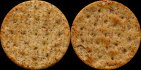 dry cracker biscuit