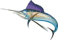 Fish 21