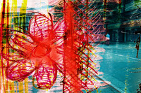 flower Az 00002