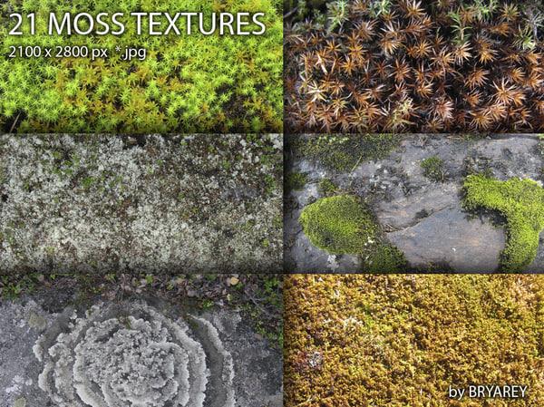 21_moss_textures_bryarey.jpg