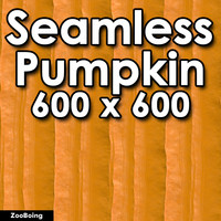 Food 016 - Pumpkin