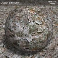 Bark tree Texture 421 T