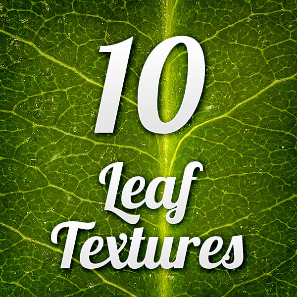 leaf-textures-pack-001.jpg