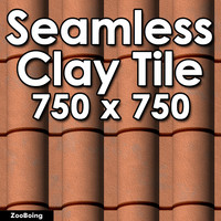 Roof 003 - Clay Tile