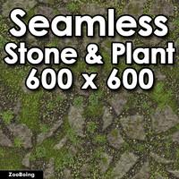 Stone 053 - Pathway
