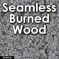 Wood 048 - Burned
