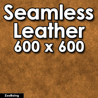 Skin 037 - Leather