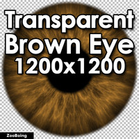 Biology 047 - Brown Eye