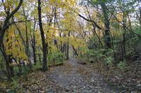 Hixon Park