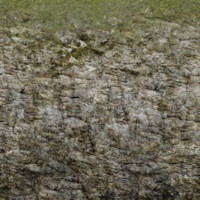 mossy mountain texture