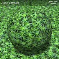 Forest moss Texture 421 A