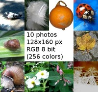 natur in 10 stock photo