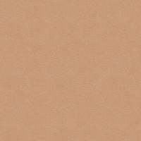 Seamless HD Skin Texture