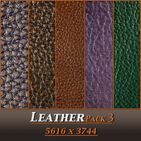 Leather Pack 3