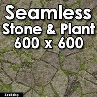 Stone 055 - Grass & Rock