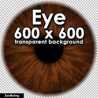 Biology 028 - Brown Eye