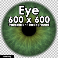 Biology 029 - Green Eye