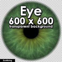 Biology 029 - Green Eye