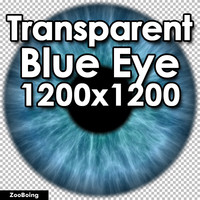 Biology 033 - Blue Eye