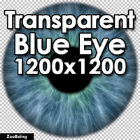 Biology 035 - Blue Eye