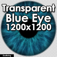 Biology 040 - Blue Eye