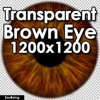 Biology 045 - Brown Eye