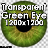 Biology 048 - Green Eye