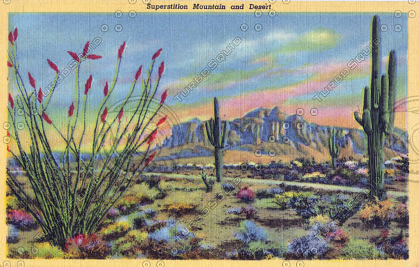 New Mexico Postcard.jpg