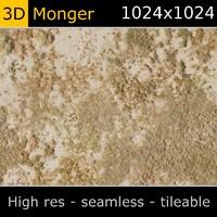 Mold Texture