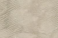Sand Ripple 1
