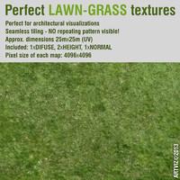 Perfect Lawn - Grass