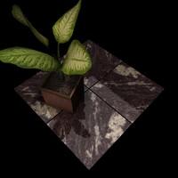 Granite_005 Amadeus