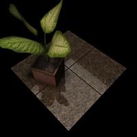 Granite_050 Carioca Gold