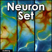 Set 030 - 3 Neuron Images