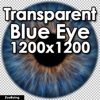 Biology 037 - Blue Eye