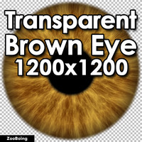 Biology 044 - Brown Eye