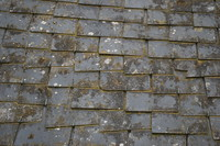 Roof_Texture_0006