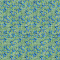 Coordinated Cottons Blue on Green Floral
