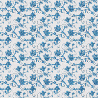 Coordinated Cottons Blue on White Floral