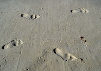 Beach footprints2