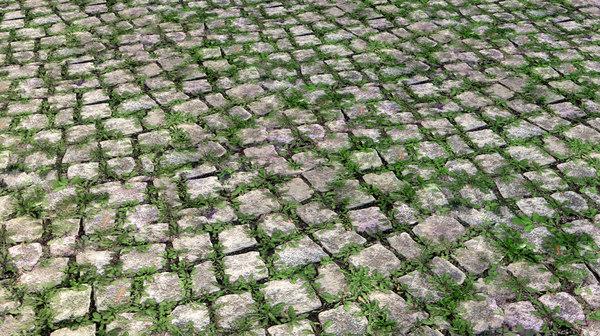 grass_cobblestone.jpg