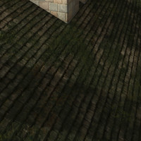 mossy wooden roof  tiles