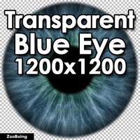 Biology 034 - Blue Eye