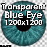 Biology 041 - Blue Eye