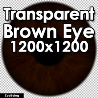 Biology 046 - Brown Eye