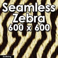 Skin 045 - Zebra