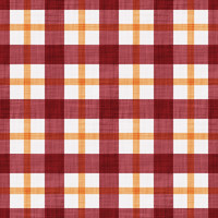Coordinated Cottons - Apricot on Red Plaid