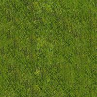Dusty_Grass