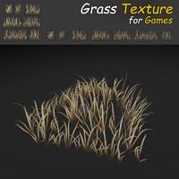 Dry Wild Texture